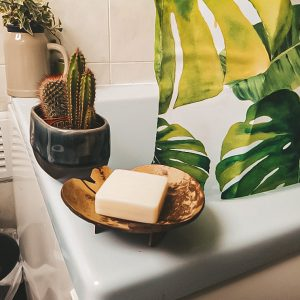 coconut soap dish soap holder