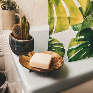 coconut soap dish soap holder