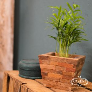 Wooden Block Plant Pot