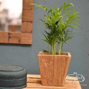 Wooden Plant Pot