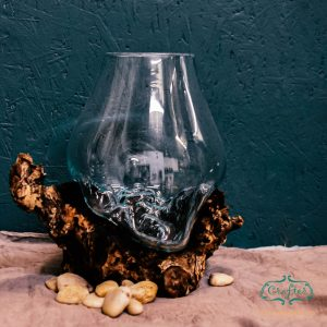 Glass Bowl Terrarium Driftwood Ornament