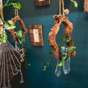 Melted Glass on Drift Wood Plant Hanger-1 terrarium